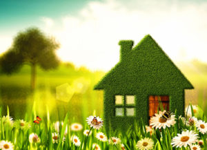 piccola-casa-verde